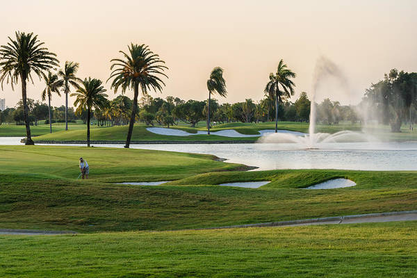 Photograph - 18th At Doral by Ed Gleichman