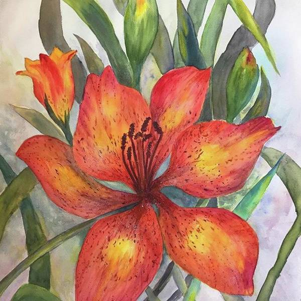 Wall Art - Photograph - 18x24 Watercolor Just Finished by Florence Ferrandino