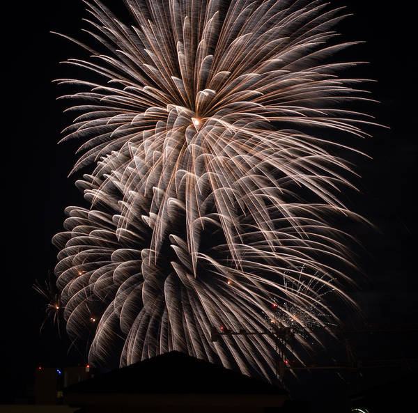 Photograph - Fireworks 2015 Sarasota 19 by Richard Goldman
