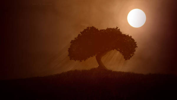 Night Digital Art - Tree by Super Lovely