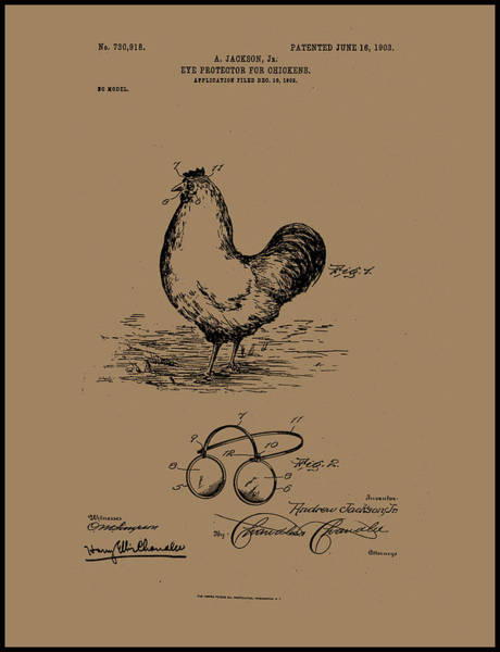 Painting - 1902 Eye Protectors For Chickens by Andrew Jackson Jr
