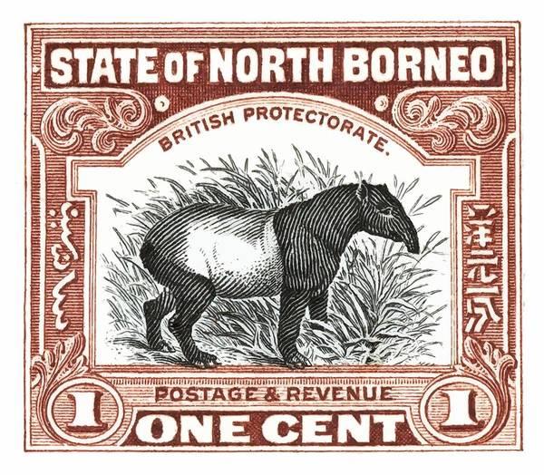 Wall Art - Digital Art - 1904 North Borneo Tapir Postage Stamp by Retro Graphics