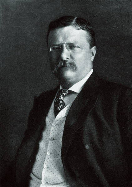 Bully Painting - 1904 President Theodore Roosevelt by Historic Image