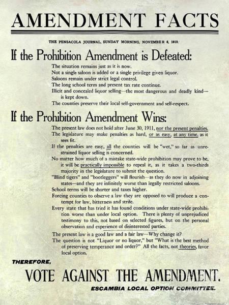 Flapper Photograph - 1910 Prohibition Amendment Facts by Jon Neidert