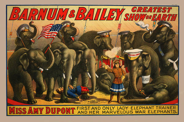 Drawing - 1915 Barnum And Bailey Circus Elephant Trainer Miss Amy Dupont Poster by Movie Poster Prints