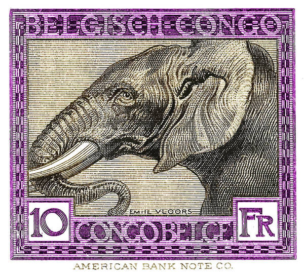 Fauna Digital Art - 1923 Belgian Congo Elephant Postage Stamp by Retro Graphics