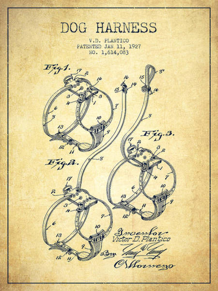 Wall Art - Digital Art - 1927 Dog Harness Patent - Vintage by Aged Pixel