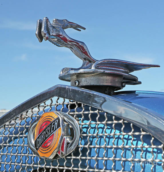 Photograph - 1929 Chrysler Hood Ornament by Kevin McCarthy