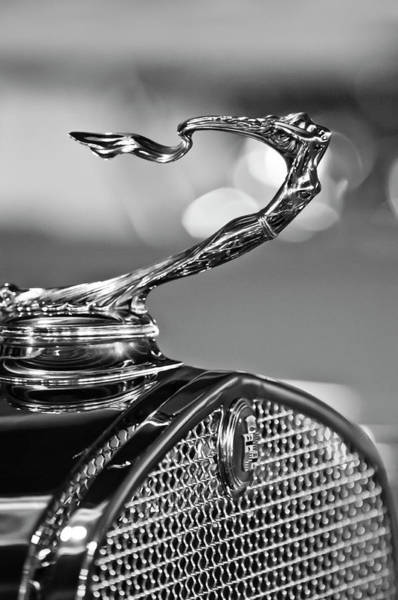 Hoodie Photograph - 1930 Cadillac Roadster Hood Ornament 2 by Jill Reger