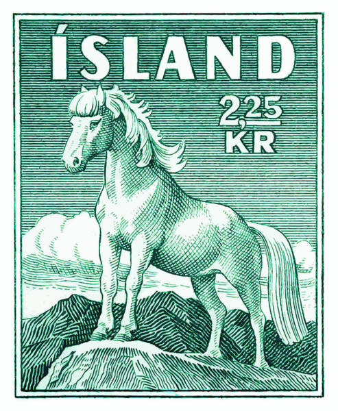 Iceland Digital Art - 1930 Iceland Pony Postage Stamp by Retro Graphics