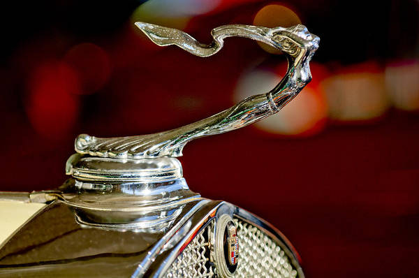 Hoodie Photograph - 1931 Cadillac 355 A Roadster Hood Ornament by Jill Reger
