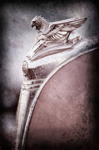 Wall Art - Photograph - 1932 Essex Griffin Hood Ornament -0447ac by Jill Reger