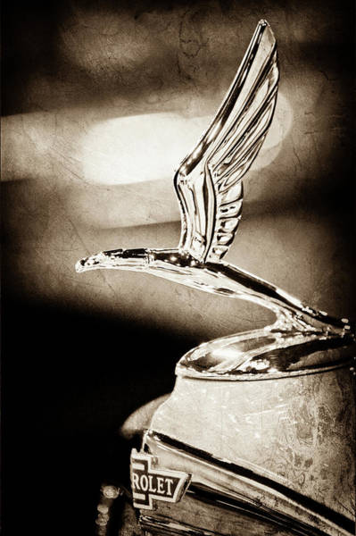 Wall Art - Photograph - 1933 Chevrolet Eagle Hood Ornament -0484s by Jill Reger