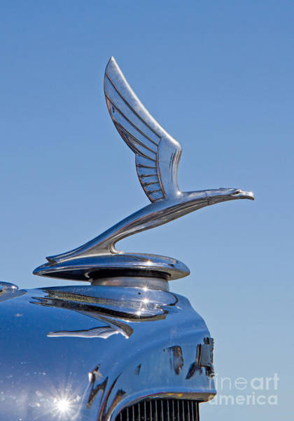 Photograph - 1933 Chevy Hood Ornament by Kevin McCarthy