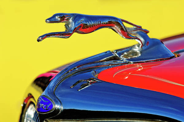Hoodie Photograph - 1934 Ford Hood Ornament by Jill Reger