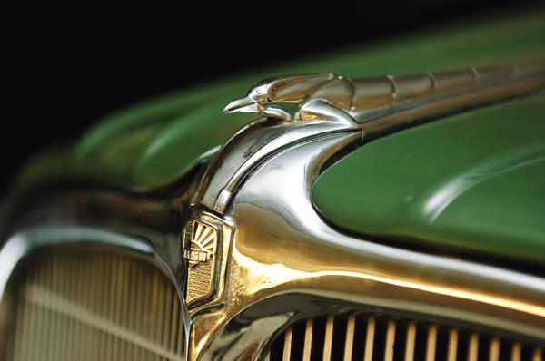 Photograph - 1934 Nash Ambassador 8 Hood Ornament by Jill Reger