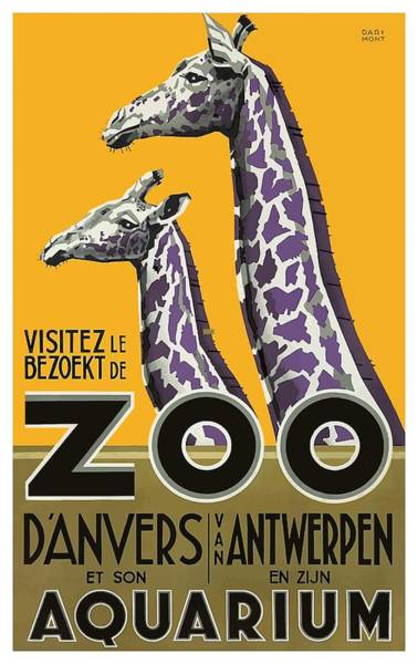Wall Art - Digital Art - 1935 Antwerp Zoo Giraffes Advertising Poster by Retro Graphics