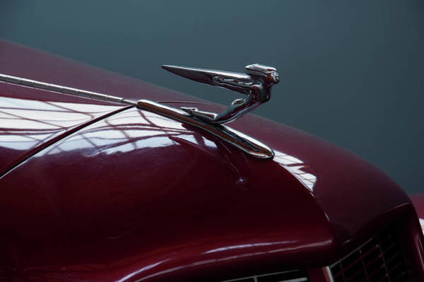 Photograph - 1936 Auburn Hood Ornament by Chris Flees