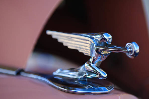 Wall Art - Photograph - 1936 Packard Hood Ornament by Jill Reger