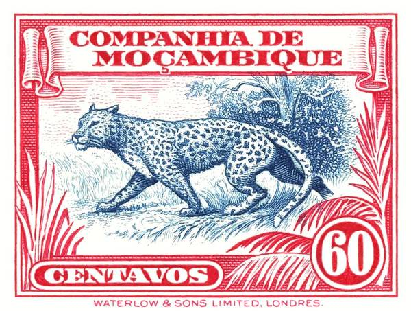 Wall Art - Digital Art - 1937 Mozambique Company Leopard Postage Stamp by Retro Graphics