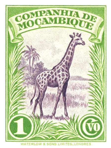 Wall Art - Digital Art - 1937 Mozambique Giraffe Postage Stamp by Retro Graphics