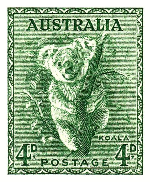 Australian Wildlife Digital Art -  1940 Australia Koala Postage Stamp by Retro Graphics