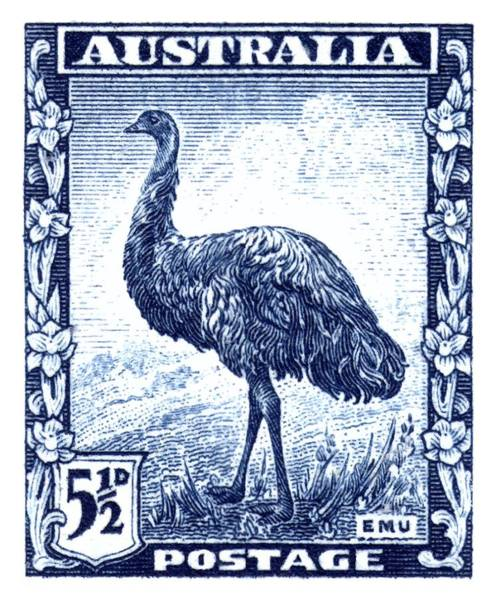Fauna Digital Art - 1942 Australia Emu Bird Postage Stamp by Retro Graphics