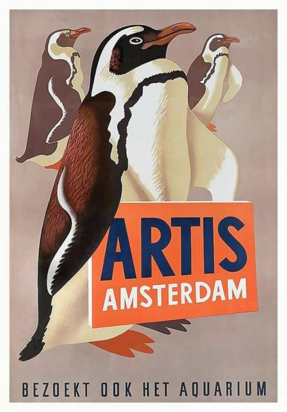 Wall Art - Digital Art - 1947 Artis Zoo Amsterdam Penguins Poster by Retro Graphics