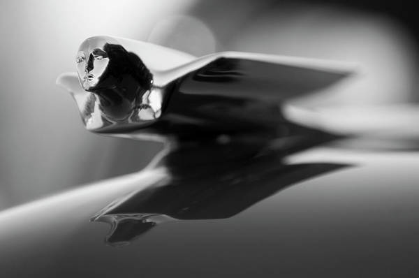 Photograph - 1947 Cadillac Hood Ornament 2 by Jill Reger