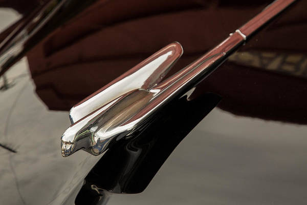 Photograph - 1948 Cadillac Sedan Classic Car Photograph 5713.02 by M K Miller
