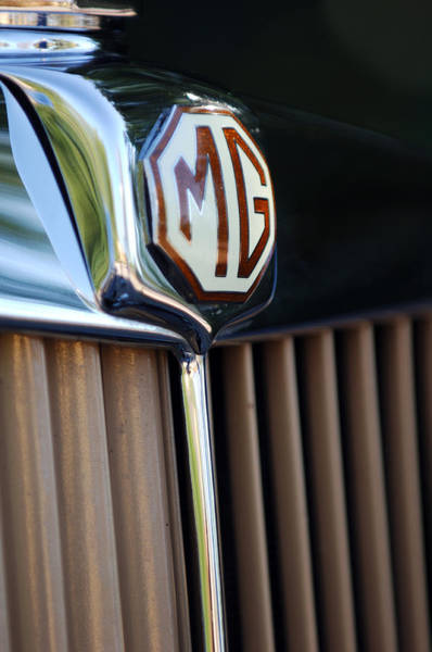 Tc Photograph - 1948 Mg Tc Grille by Jill Reger