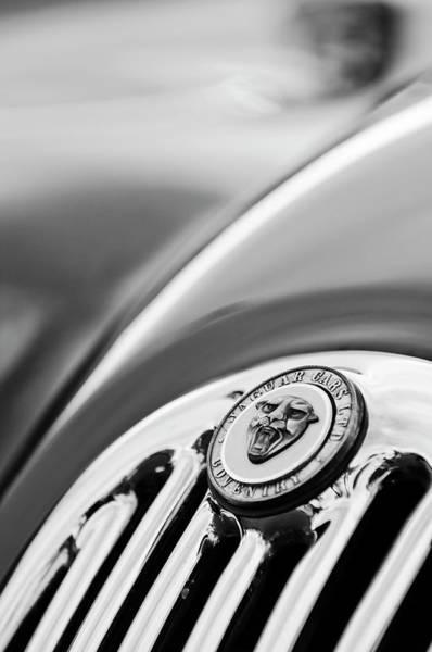 Photograph - 1952 Jaguar Hood Ornament2 by Jill Reger