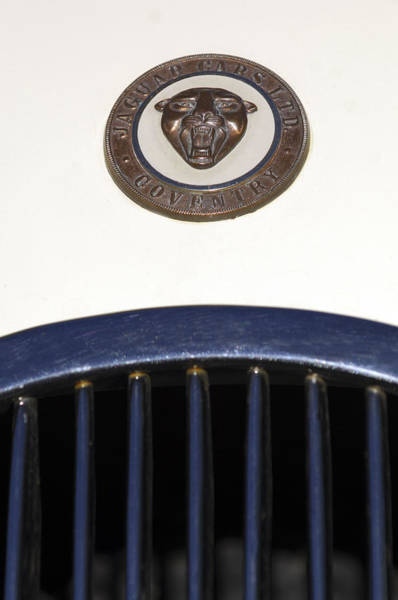 Photograph - 1954 Jaguar Xk120 Hood Ornament by Jill Reger