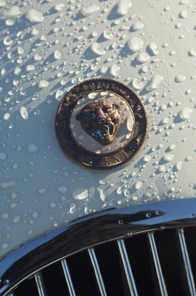 Photograph - 1954 Jaguar Xk120 Roadster Hood Emblem by Jill Reger