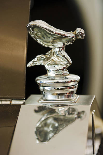Photograph - 1955 Rolls-royce Hood Ornament 4 by Jill Reger