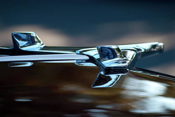 Photograph - 1956 Chevy Belair Hood Ornament Flying 2 by Jani Freimann