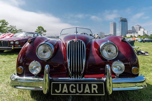 Photograph - 1956 Jaguar Xk140 Mc Open Touring Sport by Randy Scherkenbach