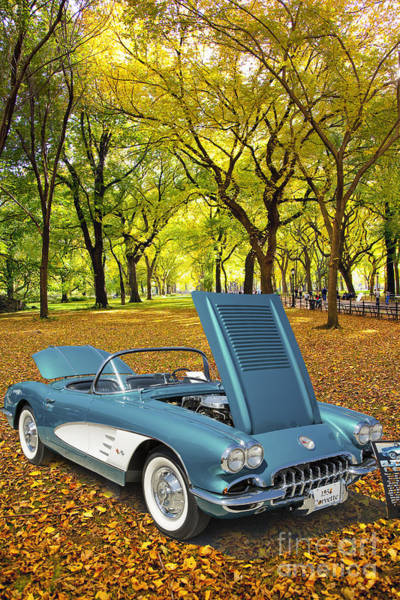 Photograph - 1958 Corvette By Chevrolet In The Park In A Color Photograph 349 by M K Miller