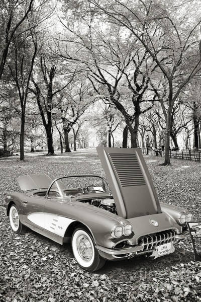 Photograph - 1958 Corvette By Chevrolet In The Park In A Sepia Photograph 349 by M K Miller