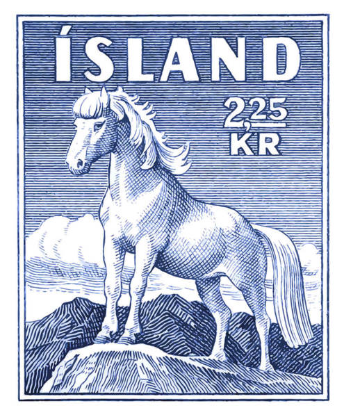Fauna Digital Art - 1958 Icelandic Horse Postage Stamp by Retro Graphics