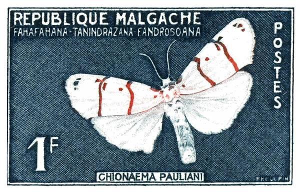 Wall Art - Digital Art - 1961 Madagascar Moth Postage Stamp by Retro Graphics