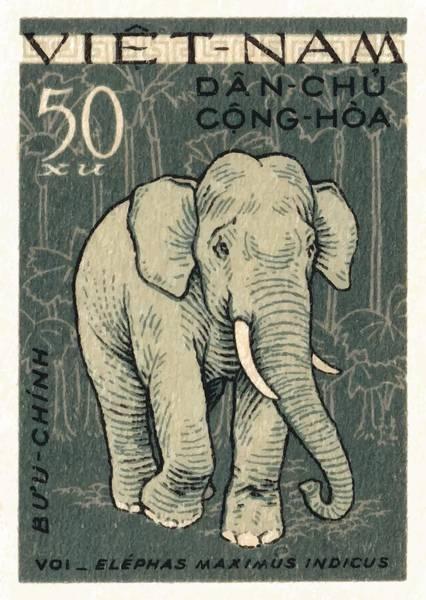 Tusk Wall Art - Digital Art - 1961 Vietnam Elephant Postage Stamp by Retro Graphics