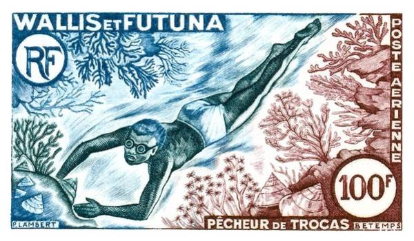 Reef Digital Art - 1962 Wallis And Futuna Shell Fisherman Postage Stamp by Retro Graphics