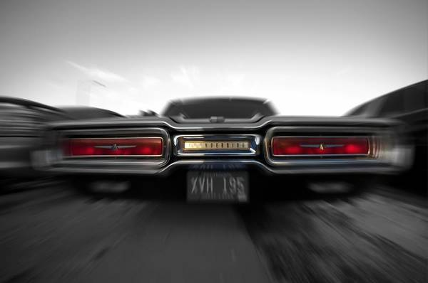 Photograph - 1964 Thunderbird Speed by Don Columbus