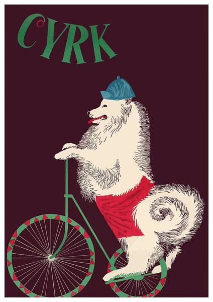 Wall Art - Digital Art - 1965 Cyrk Cycling Dog Polish Circus Poster by Retro Graphics