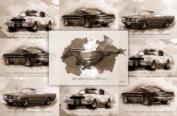 Wall Art - Digital Art - The 1965 Ford Mustang Collage I by Gary Bodnar