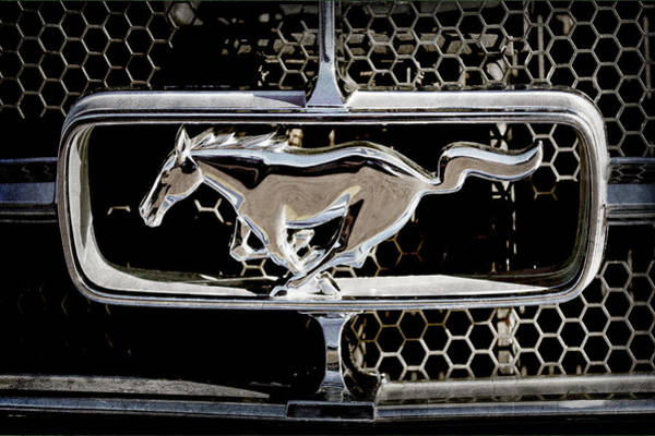 Photograph - 1965 Ford Shelby Mustang Grille Emblem -0589ac by Jill Reger