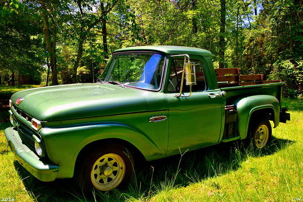 Photograph - 1966 Ford F100 Side View by Lisa Wooten