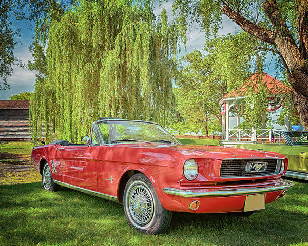 Photograph - 1966 Ford Mustang Convertible by Susan Rissi Tregoning