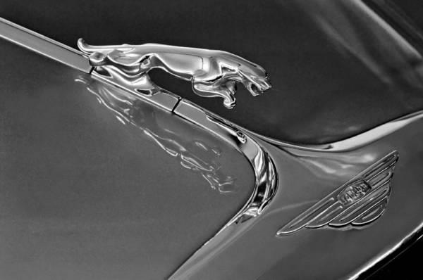 Photograph - 1966 Jaguar Hood Ornament 2 by Jill Reger